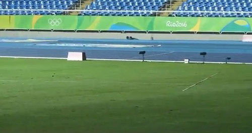 Usain Bolt: Chạy vô địch, ném lao cũng