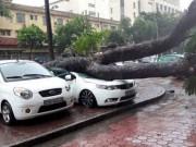 Tin tức trong ngày - Thiết bị Trung Quốc ảnh hưởng tới dự báo bão?