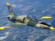 Cận cảnh sức mạnh máy bay huấn luyện L-39