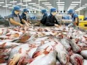 Thị trường - Tiêu dùng - Cẩn trọng khi tăng xuất khẩu cá tra sang Trung Quốc