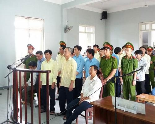 7 cán bộ kiểm lâm nhận hối lộ vụ phá rừng lớn ở Đà Nẵng lĩnh án