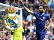 Bóng đá - Tiết lộ: Fabregas ở lại Chelsea vì bị Real chê