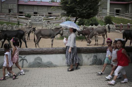 Đi sở thú ở Triều Tiên - 6