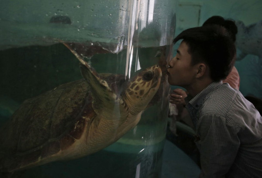 Đi sở thú ở Triều Tiên - 5