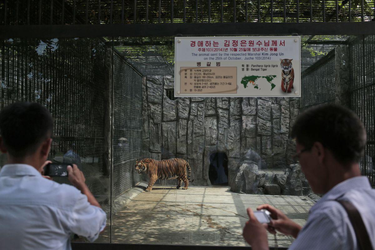 Đi sở thú ở Triều Tiên - 11