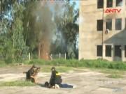 Video An ninh - Clip: CSCĐ diễn tập giải cứu cán bộ bị bắt cóc