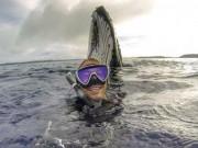 """Bạn trẻ - Cuộc sống - Chàng trai gây """"sốt"""" với bức ảnh tự sướng với cá voi"""