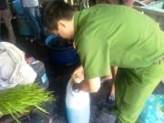 """Thị trường - Tiêu dùng - TP.HCM: Phát hiện 1,5 tấn rau muống """"uống"""" hóa chất nhuộm quần áo"""