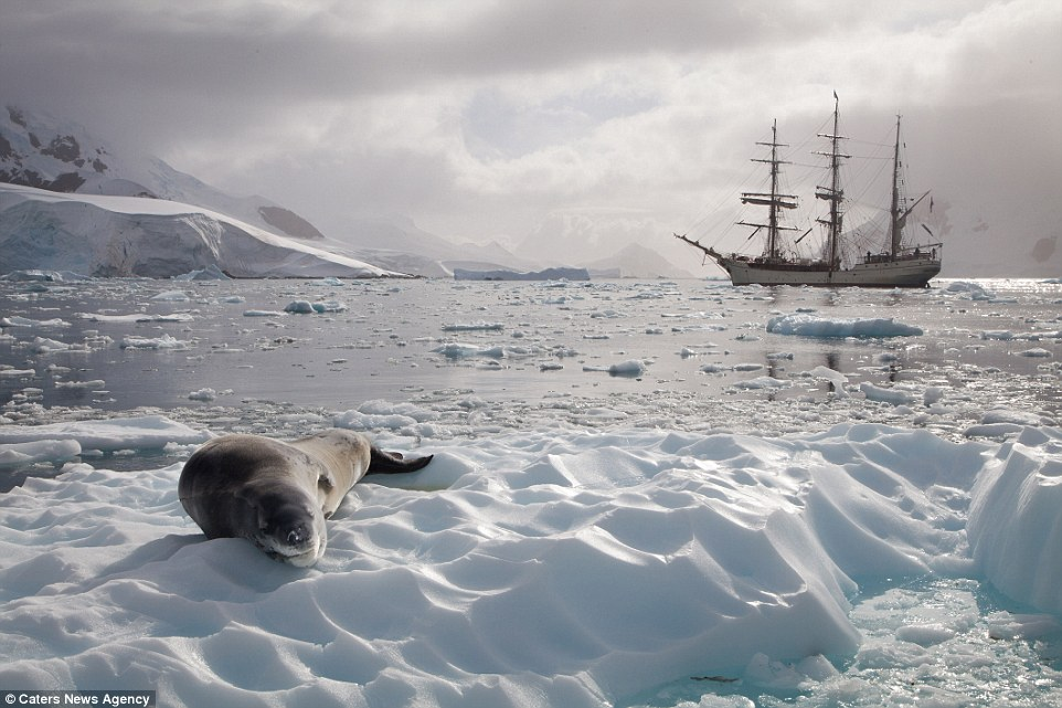 Ảnh cuộc sống ở nơi lạnh nhất trái đất - 10