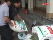 """Thị trường - Tiêu dùng - Phục kích 1 tấn mì chính lậu """"tuồn"""" từ Trung Quốc"""