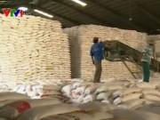 Thị trường - Tiêu dùng - Thêm rào cản mới với xuất khẩu gạo sang Trung Quốc