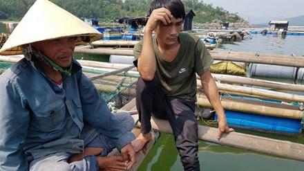 Cá chết ở biển Thanh Hóa: Có lặp lại kịch bản Formosa?