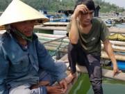 Tin tức trong ngày - Cá chết ở biển Thanh Hóa: Có lặp lại kịch bản Formosa?