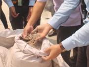 Tin tức trong ngày - Bùn bô xít Formosa nhập từ TQ không phải xin phép