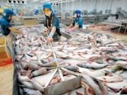 Thị trường - Tiêu dùng - Thủy sản xuất khẩu của VN bị trả về chỉ đứng sau TQ