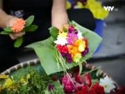 Du lịch - Về ngôi làng gói hương thơm ở Hải Phòng