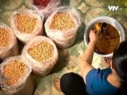Ẩm thực - Lạc rang húng lìu- món ăn gây thương nhớ của Hà Nội.