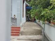 An ninh Xã hội - Clip hiện trường thảm án 4 bà cháu ở Quảng Ninh