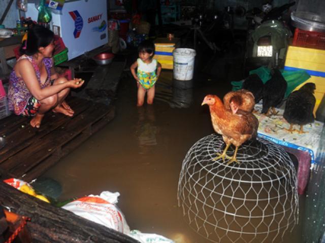 """Mưa lịch sử ở Sài Gòn: Ở truồng, ăn mì gói trên  """" ốc đảo """""""