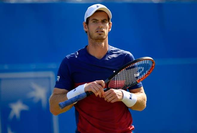 Wimbledon 2017: Chờ những cuộc chạm trán nảy lửa - 1