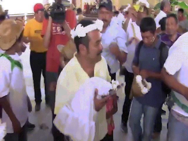Thị trưởng Mexico cưới cá sấu mặc váy trắng làm vợ