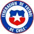 Chi tiết Confederations Cup, Đức - Chile: Những nỗ lực bất thành (KT) - 2