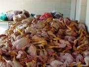 Thị trường - Tiêu dùng - Quản lý an toàn thực phẩm vẫn chỉ trên giấy?