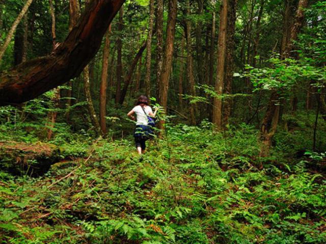 Phát hiện hang động hình trái tim ẩn mình trong khu rừng ngàn năm tuổi - 15