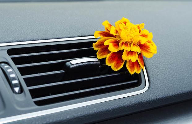 Làm sao để khử mùi xe hơi hiệu quả? - 2