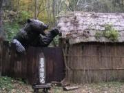 """Thế giới - Gấu """"tử thần"""" cao 2,7m ăn thịt người gây kinh hoàng ở Nhật"""