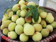 Trái đào - có phải tiên dược?