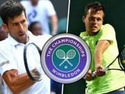 Thể thao - Djokovic- Pavlasek: Ra đòn không ngơi nghỉ (Vòng 2 Wimbledon)
