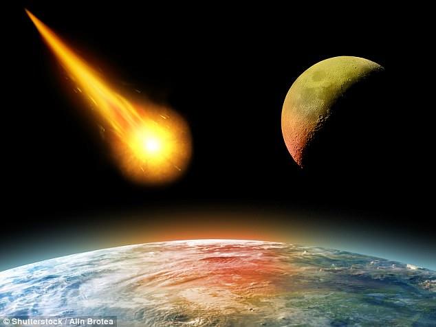 Sinh vật Trái đất sống dai nhất, chỉ chết cùng Mặt trời 2