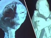 Phi thường - kỳ quặc - Tìm thấy xác 5 người ngoài hành tinh gần kỳ quan bí ẩn ở Peru?