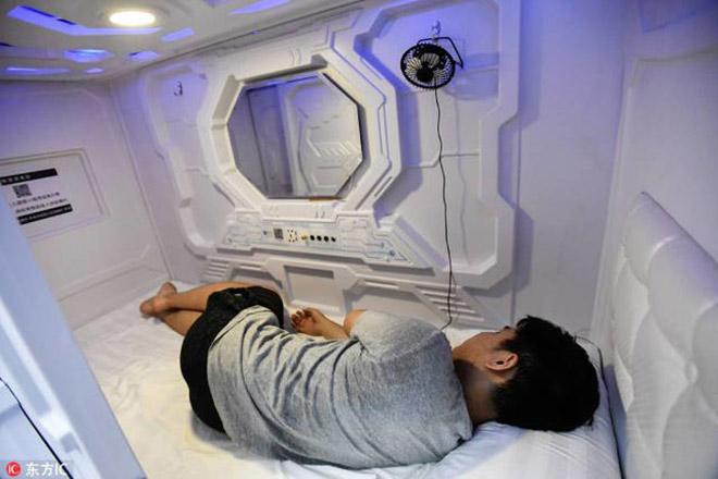 Dân công sở thích thú khi ngủ trưa trong buồng nhộng - ảnh 3