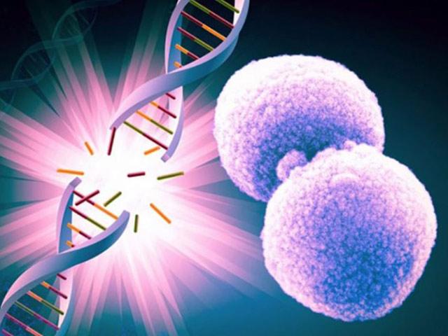 Tế bào nhiễm độc - Cội nguồn sinh ra ung bướu, bệnh tật