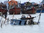 Tin tức trong ngày - Quảng Bình: Hàng chục tàu cá bị chìm, nhiều người bị thương