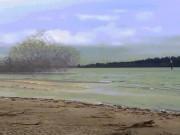 Phi thường - kỳ quặc - Kinh ngạc đàn chim bay như sóng lớn đập bờ bị dội ngược