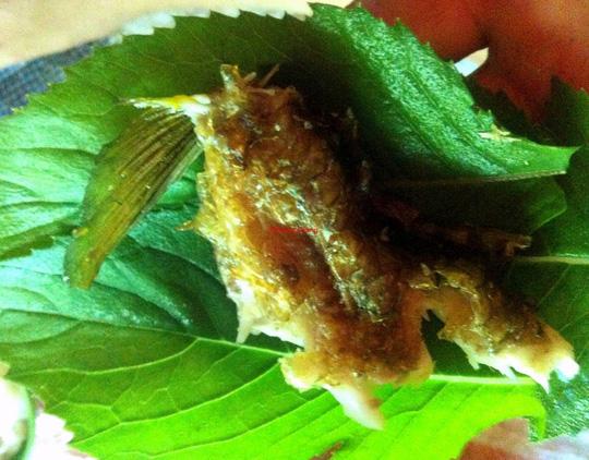 Ngon như cá suối chiên xù cuộn rau rừng - 5