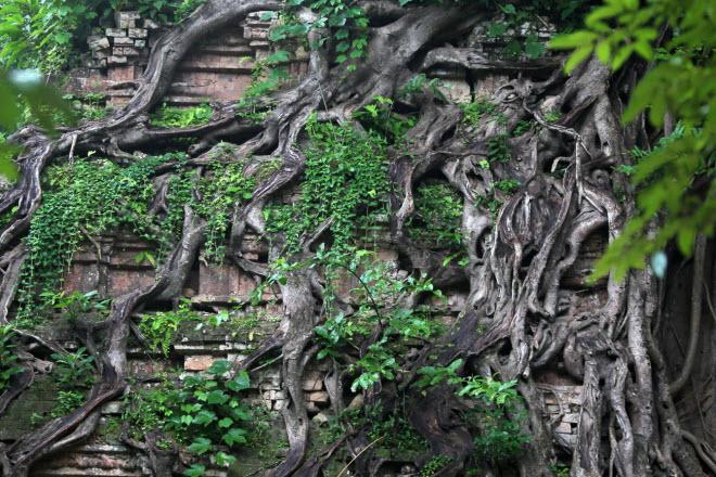 Du khách đổ xô tới di sản thế giới mới ở Campuchia - 9