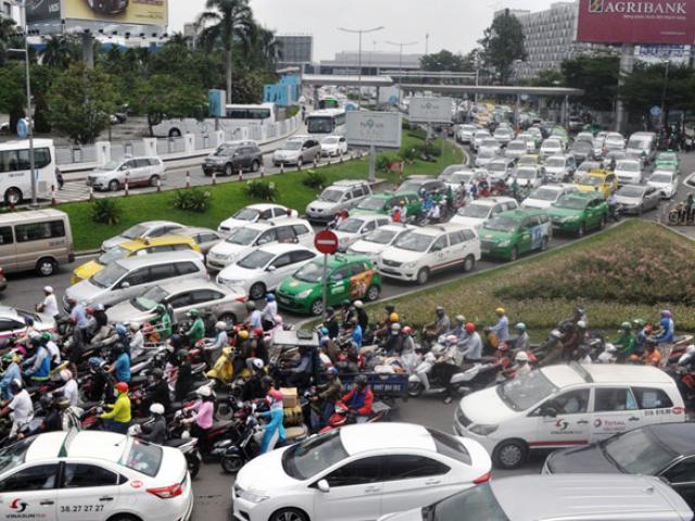 """Xóa sổ """"chợ"""" sinh vật cảnh lớn nhất SG, giao thông tê liệt từ sáng đến trưa - 13"""