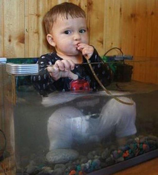 """Ái chà chà, nước trong bể này không  """" ngon """"  lắm."""