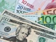 Tài chính - Bất động sản - Doanh nghiệp có dư nợ bằng EUR có thể lỗ tỷ giá