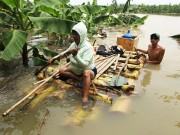 Người dân đóng bè chuối vượt sông Hồng giữa Thủ đô Hà Nội