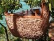 Độc đáo với nhà hàng tổ chim tại Thái Lan