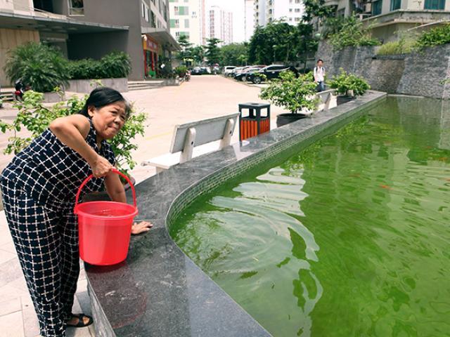 Cả chung cư mất nước nhiều ngày, con khuyên mẹ rời Thủ đô