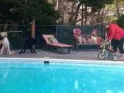 Tranh vui - Ảnh động: Nếu chị em coi xe đạp là... đồ chơi