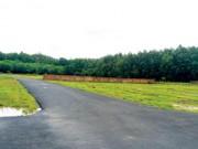 Tài chính - Bất động sản - Đất quanh sân bay Long Thành 'sốt vì cò'
