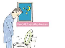 Kỳ lạ: Khỏe thận, hết tiểu đêm sau 7 ngày nhờ cây thuốc dễ tìm quanh ta - 1