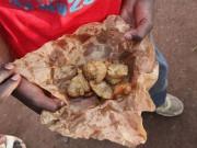 Giáo dục - du học - Khác biệt trời vực trong thực đơn bữa trưa của học sinh khắp thế giới
